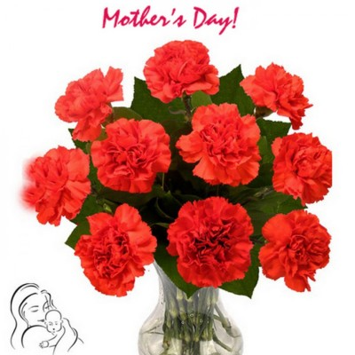 Mother's day special roses