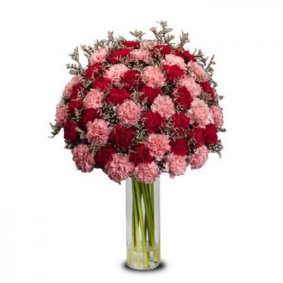 shade pink and red carnations