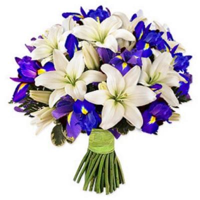 violet irises