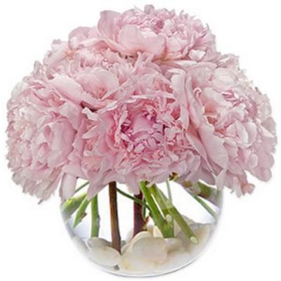 glass vase of peonies
